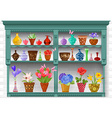 cupboard with modern glass vases and flowers vector image vector image