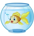 Cartoon golden fish in the aquarium vector image