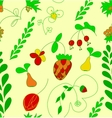 Hand draw fruit berry and flower seamless pattern vector image