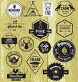 Vintage Hand drawn Labels vector image