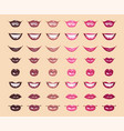 glamorous glossy shining female lips in pink vector image vector image