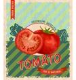 Tomato retro poster vector image