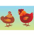 chicken cartoons vector image