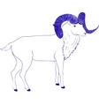 goat or ram with long horn vector image