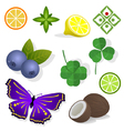 Clipart - plants vector image vector image