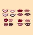 glamorous glossy shining female lips vector image vector image