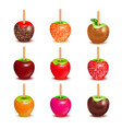 toffee candy apples assortment set vector image