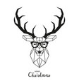 hipster deer with glasses vector image