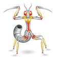 Robot-mantis vector image