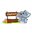 Cartoon zoo elephant sign vector image