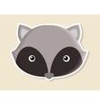 raccoon animal cute little design vector image
