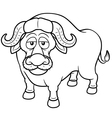 African buffalo vector image