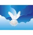 Dove in the Sky vector image