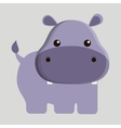 hippo animal cute little design vector image