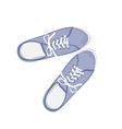 Blue sport gumshoes vector image