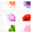 Floral Greeting Cards Background vector image