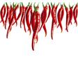 hot pepper vector image
