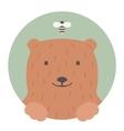 Animal set Portrait in flat graphics - Bear vector image