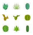 cactus icons set cartoon style vector image