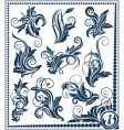 floral design element collection vector image