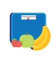 Bathroom scale isolate over white background vector image