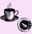 coffee coffee cup vector image