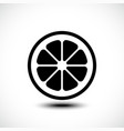 lemon orange lime grapefruit slice vector image