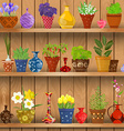 herbs and flowers planted in cute ceramic pots for vector image vector image
