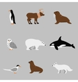 Arctic and antarctic animals set in flat vector image