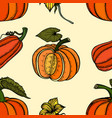Pattern with pumpkins vector image