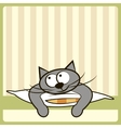 Cute cat on the pillow vector image