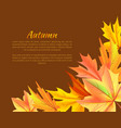 autumn background with colorful foliage in corner vector image