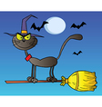 Black Cat Which Fly A Broom In Night vector image vector image