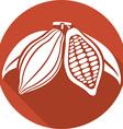 Cocoa Beans Icon vector image