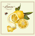 Realistic of lemon vector image