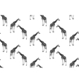 seamless pattern with giraffes vector image