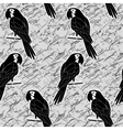 Seamless pattern black and white parrots vector image