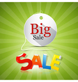 Big Sale Tag on Green Background vector image