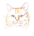 red cat portrait vector image