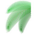 palm branch 01 vector image vector image