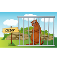 Cartoon Zoo Otter vector image vector image