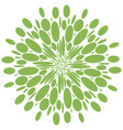 abstract radial shape greenery isolate pattern vector image