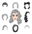 Set of blond hair styling vector image