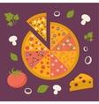 Pizza icon Minimal design Tasty pizza slices vector image