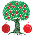 Peach tree vector image