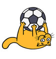 cute orange cat is playing with a soccer ball vector image
