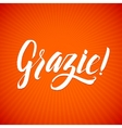 Thank You Italian Language White Letters Orange vector image