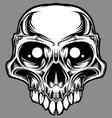 custom skull vector vector image