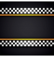 Structured metallic perforated for race sheet vector image