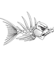 Sketch of evil skeleton fish with sharp teeth vector image
